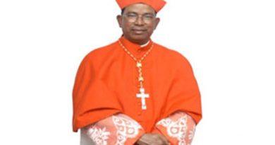 cardinal-toppo